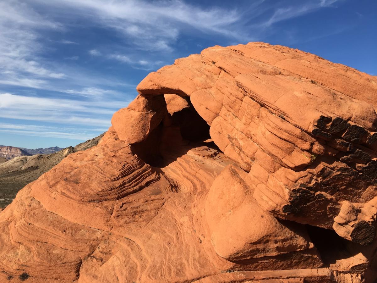 The Desert Silence