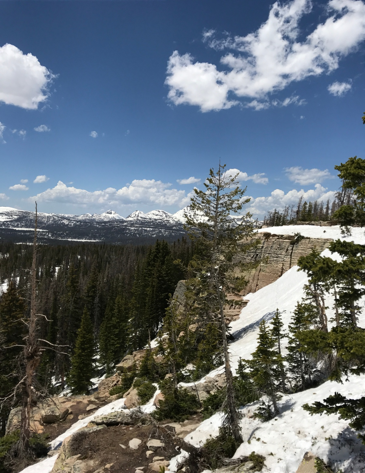 Two Miles High : A Rocky Mountain Tail : ChapterOne